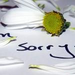 I am Sorry in all Languges