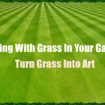 Dealing With Grass In Your Garden: Turn Grass Into Art
