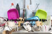 cleaning-tips-lazy