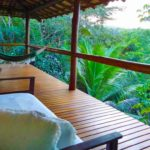 3 Reasons To Go for An Ayahuasca Retreat