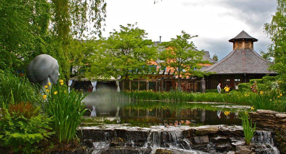 garden-pond-pump
